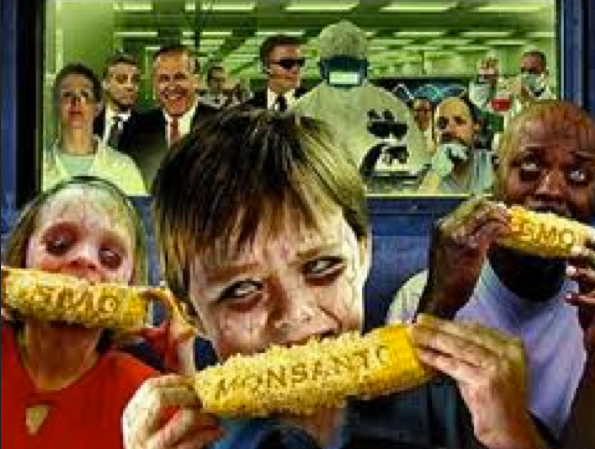 GMOS – Great Moments of Stupidity (5/6)