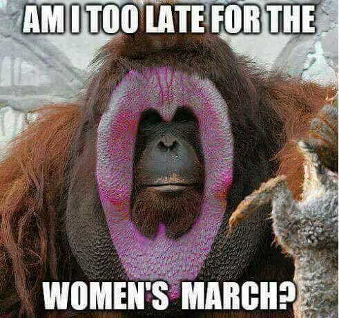 womansmarch